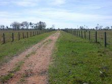 Fazenda porteira fechada na região de Porto Murtinho