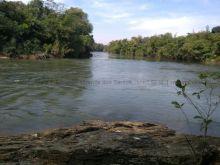 Fazenda 1.226 ha - margens Rio Miranda