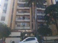 Lindo apartamento sol nascente Champs Elysees