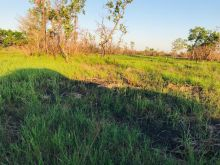 Fazenda com 20000 hectares