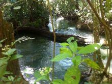 Chácara 4 ha no Rio Formoso