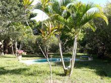 Chácara 1 hectare - poço semi artesiano e piscina